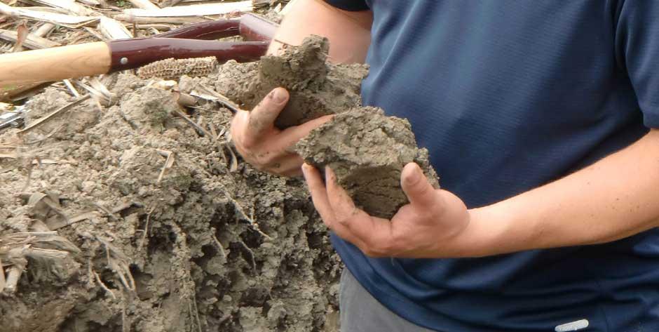 Développement et gestion de projets : conservation des sols