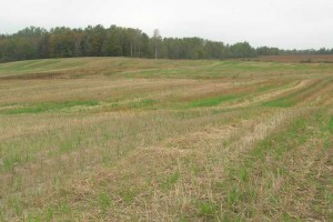 Travaux d'aménagement pour la mise en culture des sols